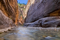 I heard we were posting some Narrows shots from Zion