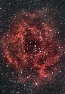 I imaged the Rosette nebula for a total of almost  hours from Malta using a  inch Newtonian and an astro-modified Canon D The nebula is a massive star-forming region in Monoceros located around  light years from Earth The central star cluster NGC formed f