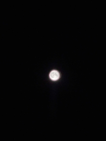 I looked out my bedroom window and took a snap of the moon Its not amazing or anything but this is the clearest shot ive ever taken of the moon so i thought id share it