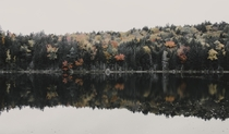 I love the fall colors sprinkled in with the pines while reflecting on the lake in the White Mountains NH