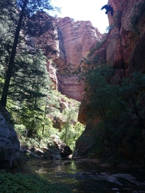 I love this canyon Subway Canyon Zion UT