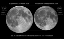 I made a comparison showing the size difference between a supermoon and micromoon