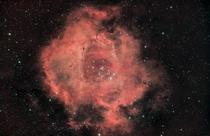 I pointed my camera at one spot in the sky for  hours to capture the Rosette Nebula in great detail