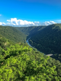 I see why John Denver likes it here New River Gorge WV