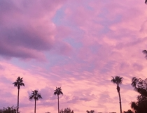 I see your Florida sunset and raise you an Arizona sunset