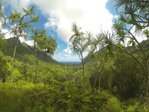 I took a lot of pics in Oahu on my Hawaii trip last year but I think this one taken in the Kaaawa Valley is my favorite