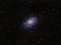 I took a picture of the Triangulum galaxy  Million light years away from my backyard in Sacramento