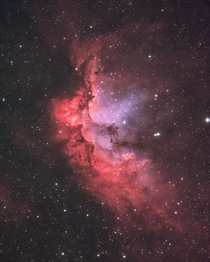 I took a picture of the Wizard Nebula in Cepheus