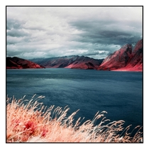 I took some infrared film to Lake Hwea New Zealand
