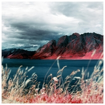 I took some old INFRARED FILM on a trip to Lake Hwea NZ
