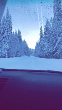 I took this in my dads car on the way to go skiing last winter no idea how it ended up like this though