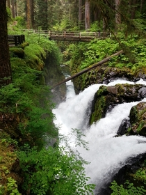 I visited the Olympic Peninsula Washington Here is a shot of Sol Duc Falls