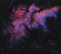 I was inspired by the wizard nebula but I put my own spin on it with this painting