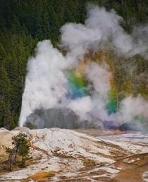 I was lucky enough to catch this geyser erupting and making its own rainbow Yellowstone NP USA