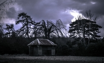 I went exploring the grounds of an abandoned mental asylum this was the garden  x-post from rpics