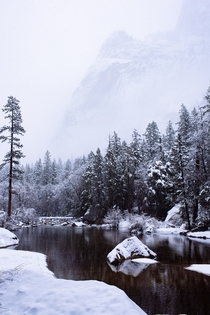 I went to Yosemite during the winter storm two weeks ago and decided to take a hike in the middle of it