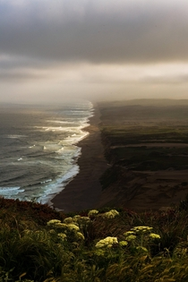 I wonder who needed to Sine and Cosine to make these lands a national park Point Reyes National Seashore California