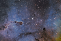 IC   Elephants Trunk Nebula in SHO taken over the last week