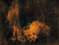IC-Flaming Star Nebula