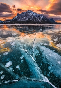 Ice bubbles in Abraham Lake in the Canadian Rockies  by Artur Stanisz