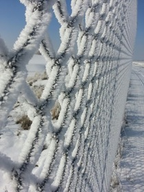 Ice Crystals Form on Utah Fence  OC