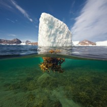 Ice in Eastern Greenland  photo by Dmitry Arkhipov