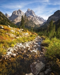 Idyllic is a word I rarely use but seemed appropriate here Grand Teton National Park Wyoming natureprofessor