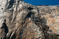 If you zoom into the greyed out portion near the center of the image you can see a pair of climbers halfway up the  Southwest face of El Capitan Yosemite National Park California