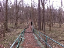 IL Abandoned Girl Scout Camp - The Bridge  x