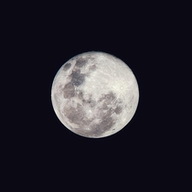 Image of the Snow moon using a really budget setup Canon PowerShot S and tripod