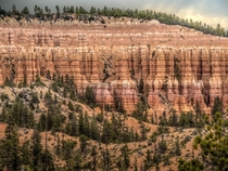 Imposing wall of hoodoos at Bryce Canyon Utah