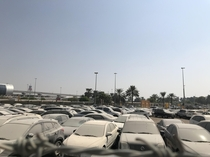 Impound car lot near Dubai Airport Most of these cars have been sitting since I moved here in
