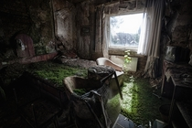 In a bed of grass - Room in a burned out and abandoned hotel near Erfurt Germany  photo by Michael Mehrhoff
