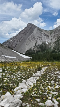 In the high country of Montanas Bob Marshall Wilderness
