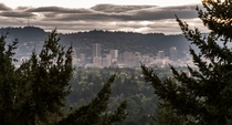 In the middle of the forest there is Portland -