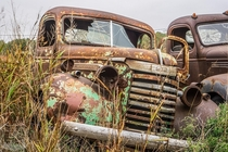 In the weeds of old Route  - Erick Oklahoma