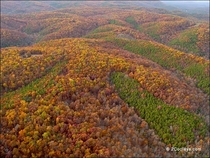 Incredible Aerial of the Boston Mountains on the Ozark Plateau Arkansas
