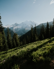 Incredible views in Mount Rainer National Park
