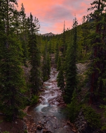 Independence Pass Colorado  I took this photo near our campsite last year Im looking forward to road trips and camping this summer Check out my Instagram jkrauthphotography to follow my adventures