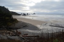 Indian Beach at low tide Ecola State Park OR
