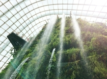 Indoor waterfall at Cloud Forest - Gardens by the Bay Singapore