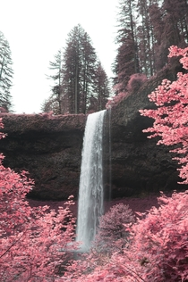 Infrared photo of one of the many beautiful waterfalls at Silver Falls Oregon OC x IG seanrvalentine