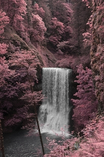 Infrared photo of Silver Falls Oregon  OC