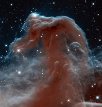 Infrared view of the Horsehead Nebula  Hubbles rd anniversary image