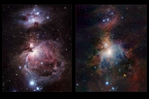 Infrared  Visible comparison of the Orion Nebula