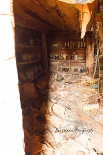Inside an abandoned food storage cellar
