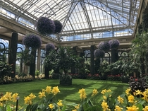 Inside the greenhouse at Longwood Gardens in the Philly suburbs
