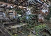 Inside the now overgrown Tone Mills Wellington Somerset United Kingdom   By Tim Knifton