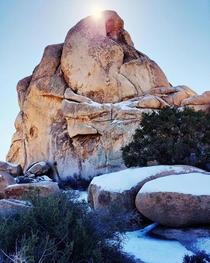Intersection Rock in the snow Joshua Tree National Park CA