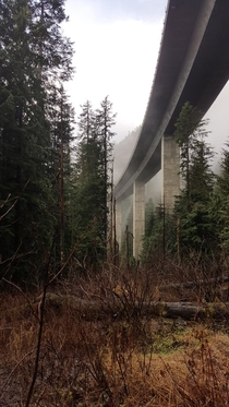 Interstate  flying over the forest near Snoqualmie Pass WA